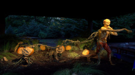 Enchanted Pumpkin Garden