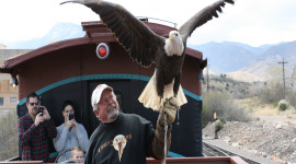 Raptors on the Rails with Liberty Wildlife - Jun. 3