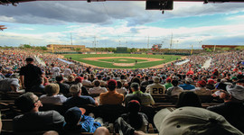 Major League Baseball Cactus League Spring Training