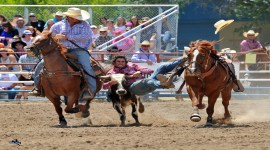 132nd Annual Prescott Frontier Days & World's Oldest Rodeo