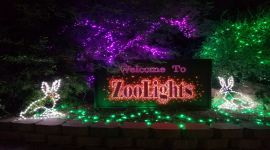 27th Annual ZooLights presented by SRP!