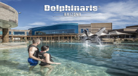 Dolphinaris Arizona