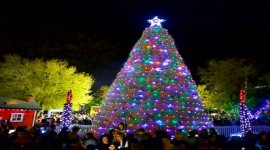 60th Annual Tumbleweed Tree Lighting Ceremony & Parade of Lights