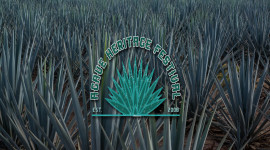 11th Annual Agave Heritage Festival