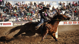 94th Annual La Fiesta de los Vaqueros – The Tucson Rodeo & Parade