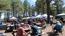 7th Annual Wine in the Woods: AZ Style