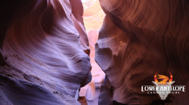 Dixie's Lower Antelope Canyon Tours