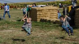 21st Annual Vertuccio Farms Fall Festival