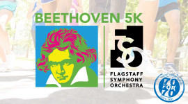 Now virtual - Beethoven 5K