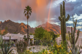 Tucson's Summer Deals for the Young and Young-at-Heart
