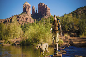 Two Paws Up for These Arizona Attractions