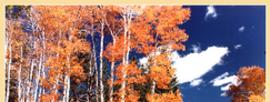 Off-Season Family Travel: Arizona Fall and Winter Bargains