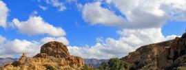 Wild On Arizona