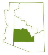 Phoenix & Central