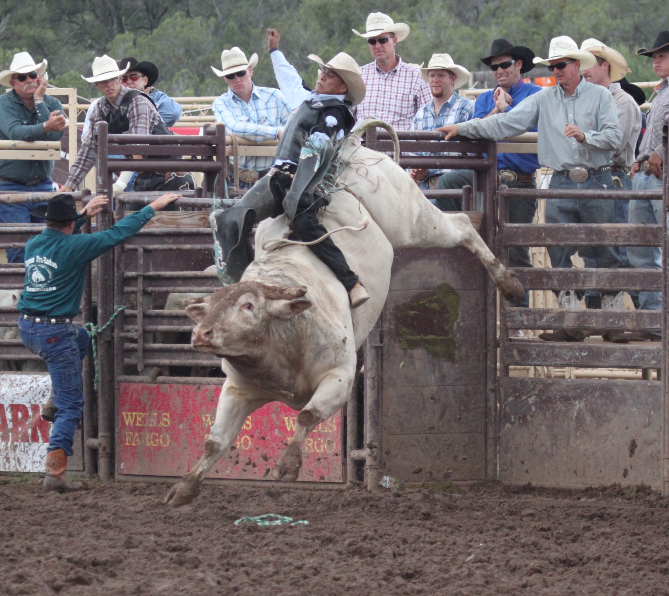136th Annual World S Oldest Continuous Rodeo Visit Arizona