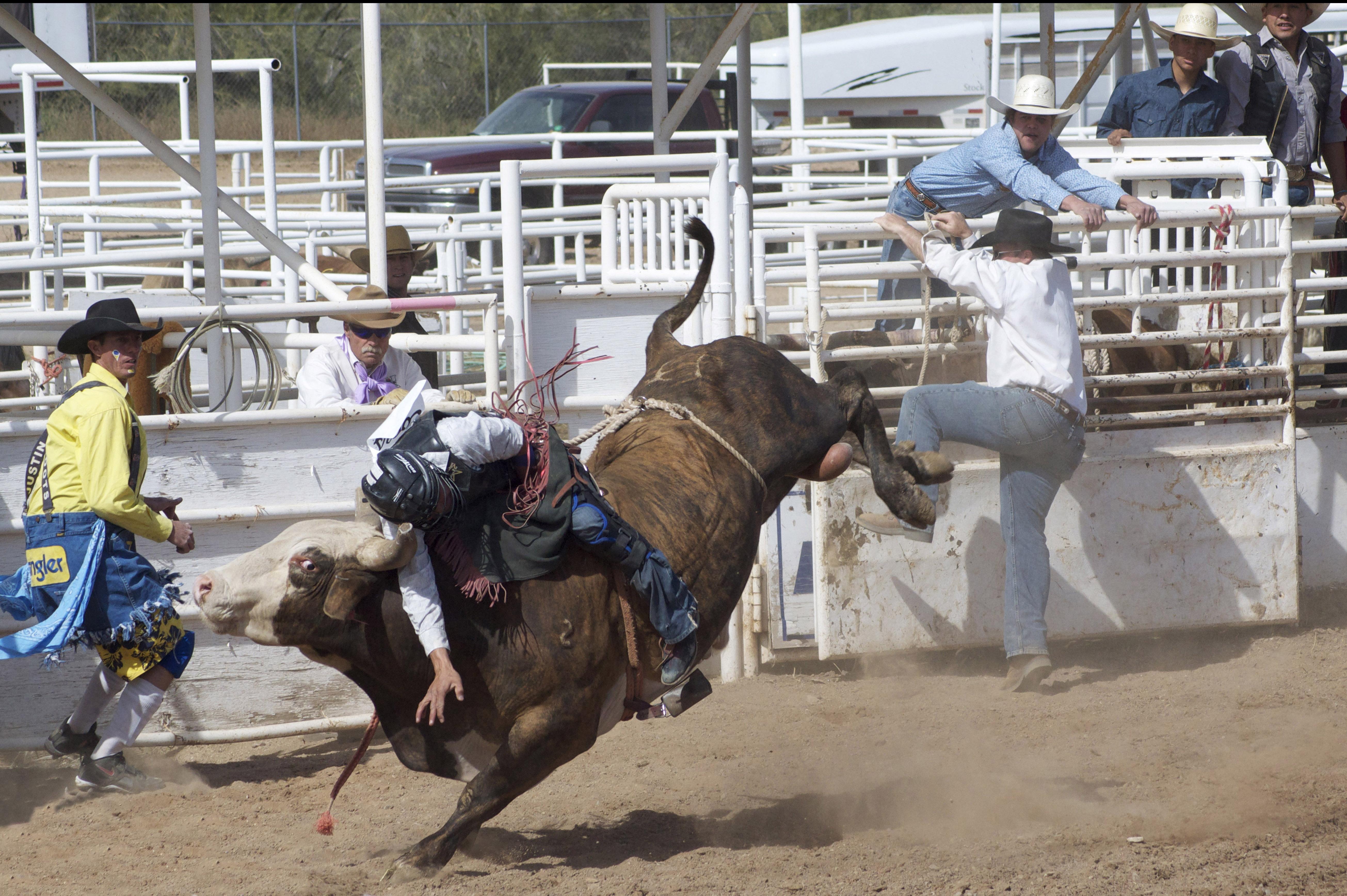 Cave Creek Rodeo Days | Visit Arizona