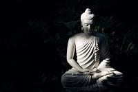 Buddhahood: You see only selfish...