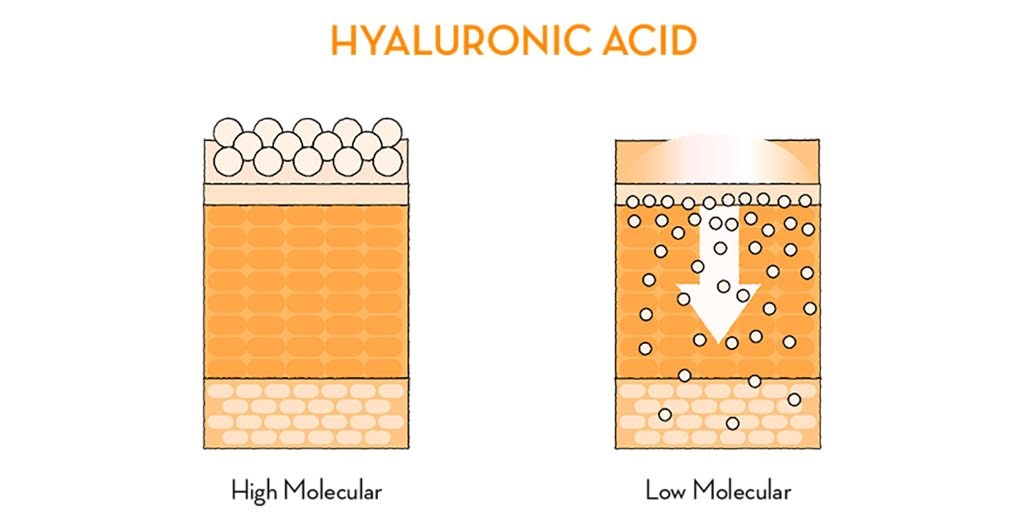 Hyaluronic Acid - The Wellnest by HUM Nutrition