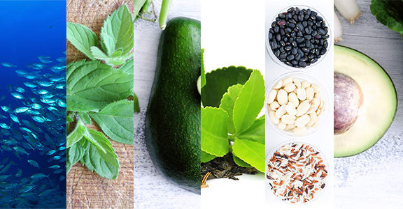 Foods to LowerCortisol