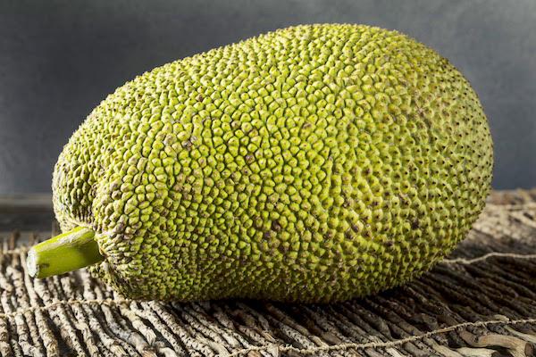 Whole Jackfruit - The Wellnest by HUM Nutrition