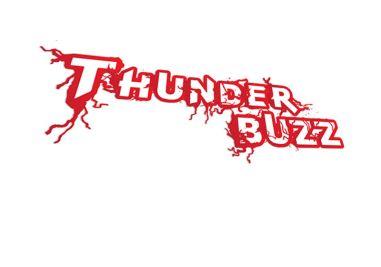 Thunder Buzz Logo Image