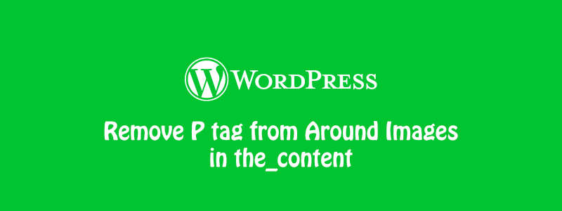 How to Remove P tag from Around Images in the_content [WordPress] ✊ image