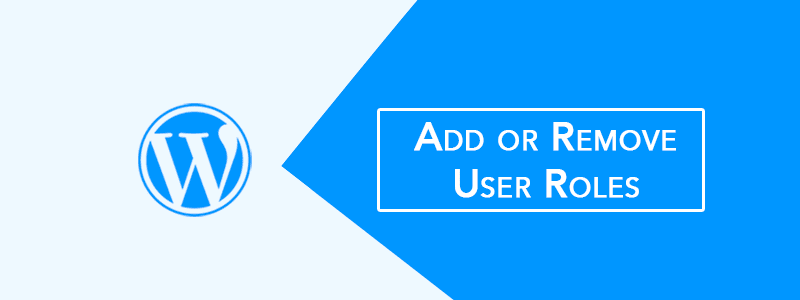 Add or Remove WordPress User Roles Without Plugin (Simple Code) ? image