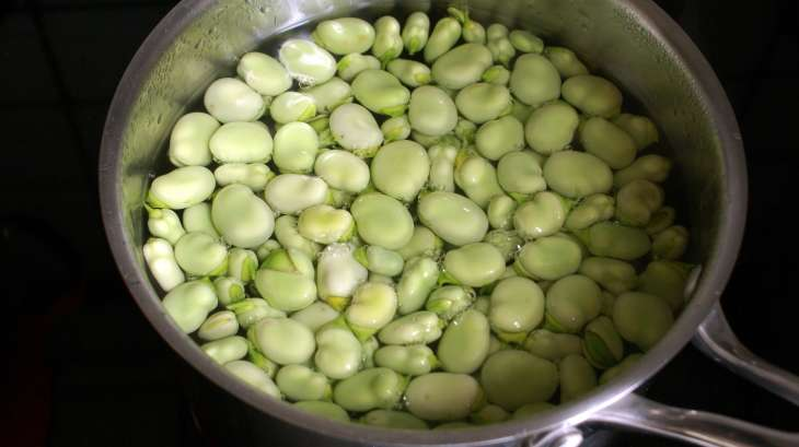 Plucher les f ves et cuisson des f ves recette des - Cuisiner les girolles fraiches ...