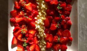 Carpaccio de fraise à la verveine et au fenouil