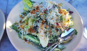 Salade de poulet aux pissenlits, radis, oignons rouge et verts