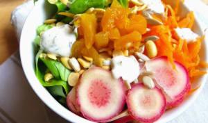 Salade crue d'ocas du Pérou, carottes, graines et fruits secs
