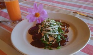 Ragoût de dinde épicé à la mexicaine, mole poblano