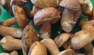 Potage crémeux de cèpes, tranches de baguettes grillées