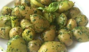 Pommes de terre fondantes au pesto d'herbes fraîches