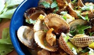 Curry de coques au céleri et à la coriandre