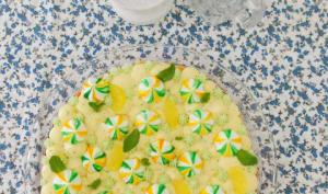 Fantastik citron menthe