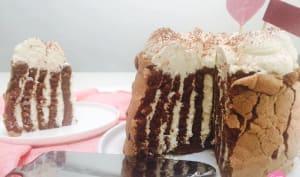 Gâteau roulé vertical au chocolat