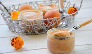 Yaourt glacé abricot et miel