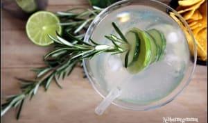 Gin infusé au concombre, citron vert et romarin