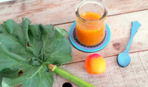 Confiture abricots rhubarbe