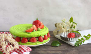 Macaron fraise et pistache