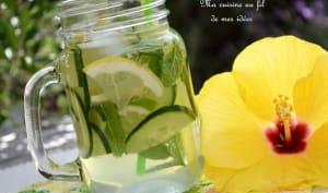 Eau pétillante au concombre, menthe, citron vert et citron jaune
