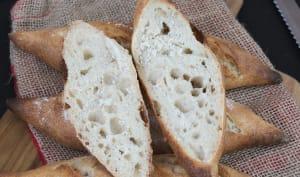 Le pain, levain, la vie