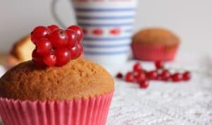 Muffins chocolat blanc et cranberries