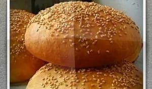Pains hamburger et buns