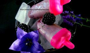 Popsicle frozen yogurt à la mûre