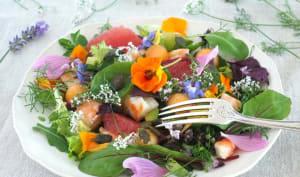 Salade de fleurs et herbes aux gambas selon Régis Marcon