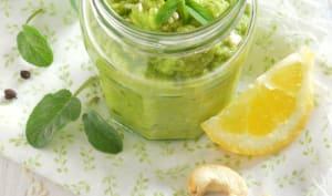 Pesto végétal de courgettes crues