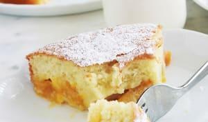 Gâteau moelleux et léger aux prunes