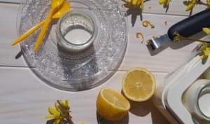 Yaourts au citron